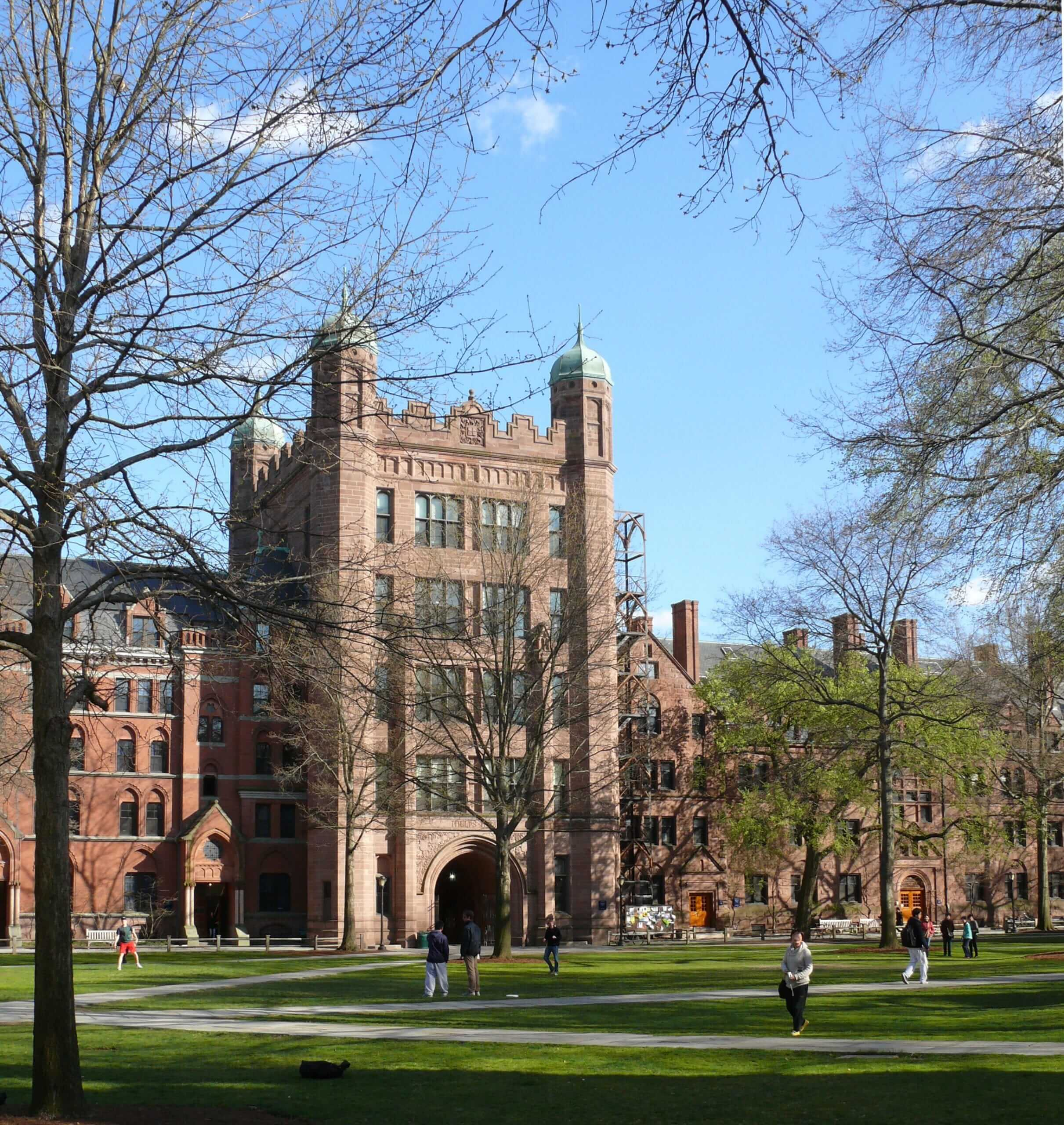 The Ivy League: key takeaways from 2020